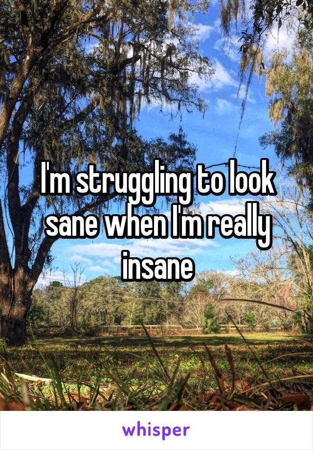 I'm struggling to look sane when I'm really insane