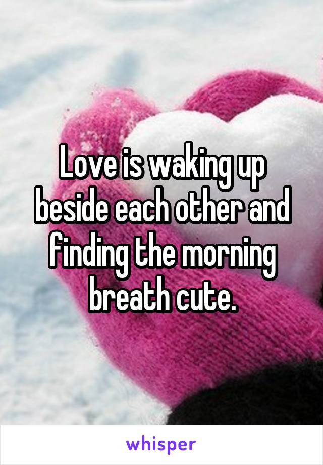 Love is waking up beside each other and finding the morning breath cute.