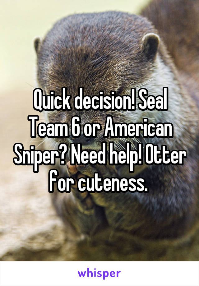 Quick decision! Seal Team 6 or American Sniper? Need help! Otter for cuteness.