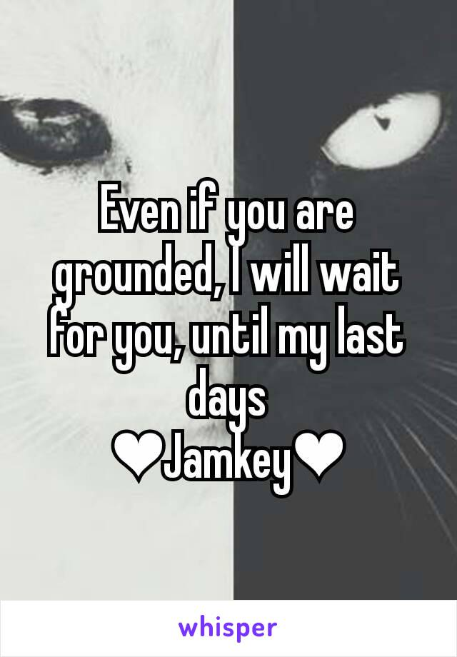 Even if you are grounded, I will wait for you, until my last days ❤Jamkey❤
