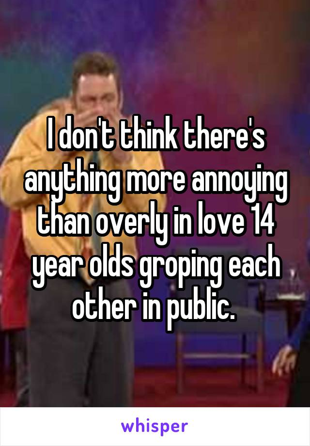 I don't think there's anything more annoying than overly in love 14 year olds groping each other in public.