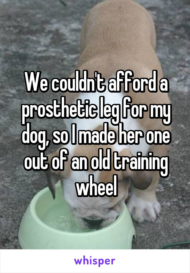 We couldn't afford a prosthetic leg for my dog, so I made her one out of an old training wheel