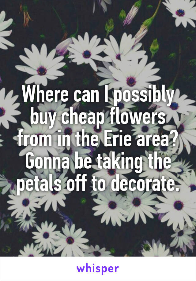 Where can I possibly buy cheap flowers from in the Erie area? Gonna be taking the petals off to decorate.