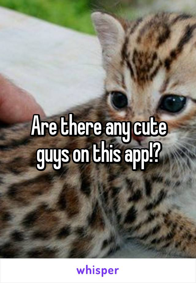 Are there any cute guys on this app!?