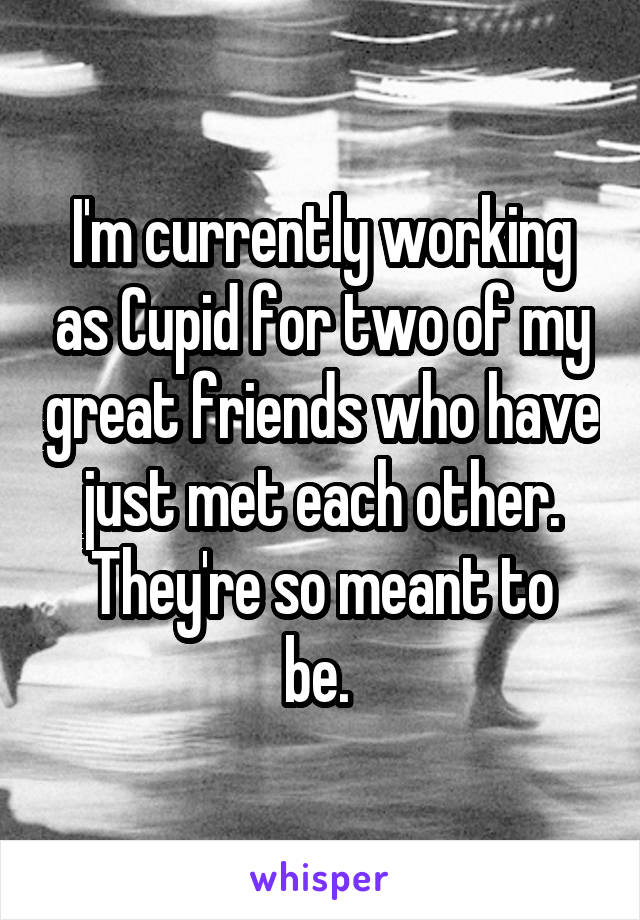 I'm currently working as Cupid for two of my great friends who have just met each other. They're so meant to be.