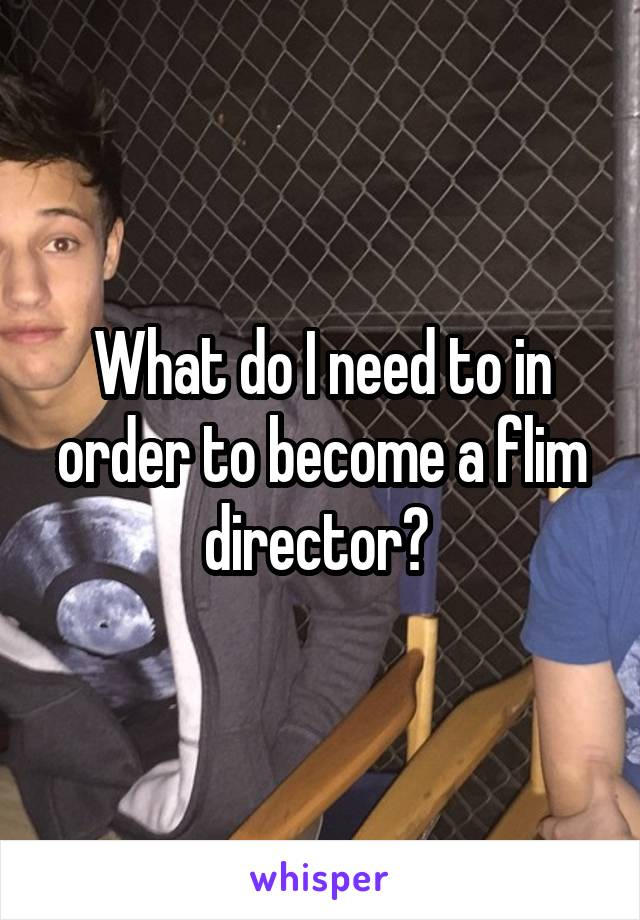 What do I need to in order to become a flim director?