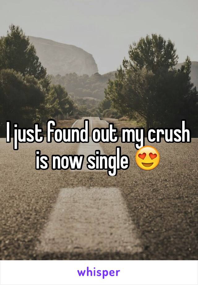 I just found out my crush is now single 😍