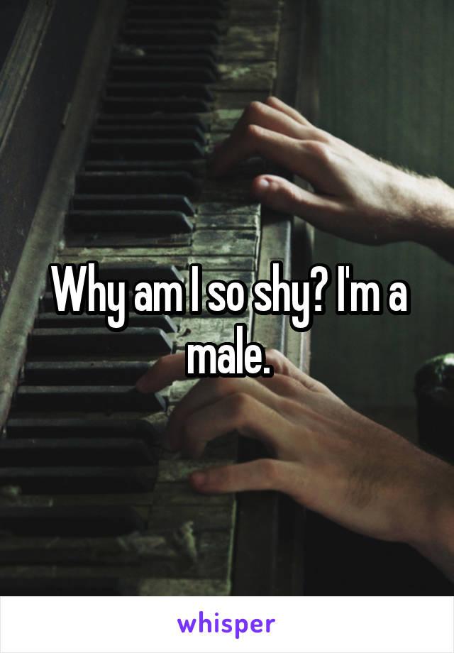 Why am I so shy? I'm a male.