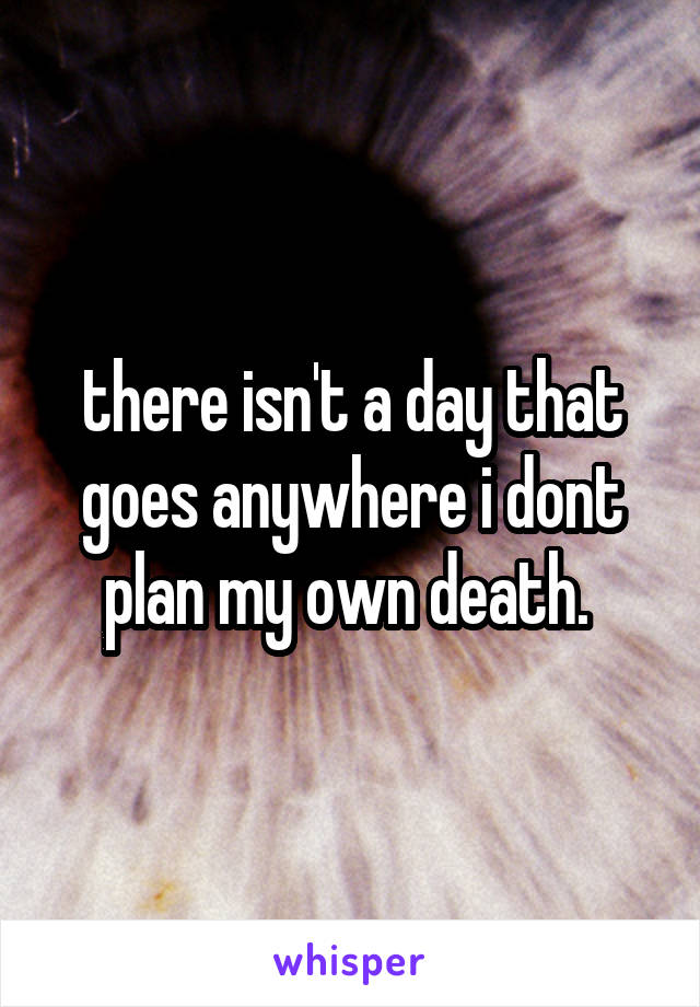 there isn't a day that goes anywhere i dont plan my own death.