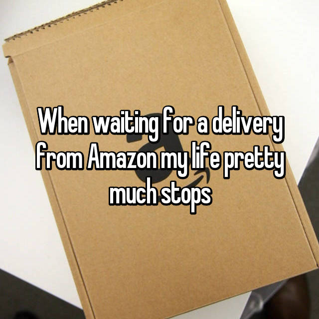 When waiting for a delivery from Amazon my life pretty much stops