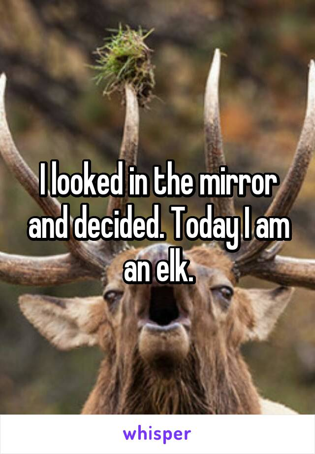 I looked in the mirror and decided. Today I am an elk.