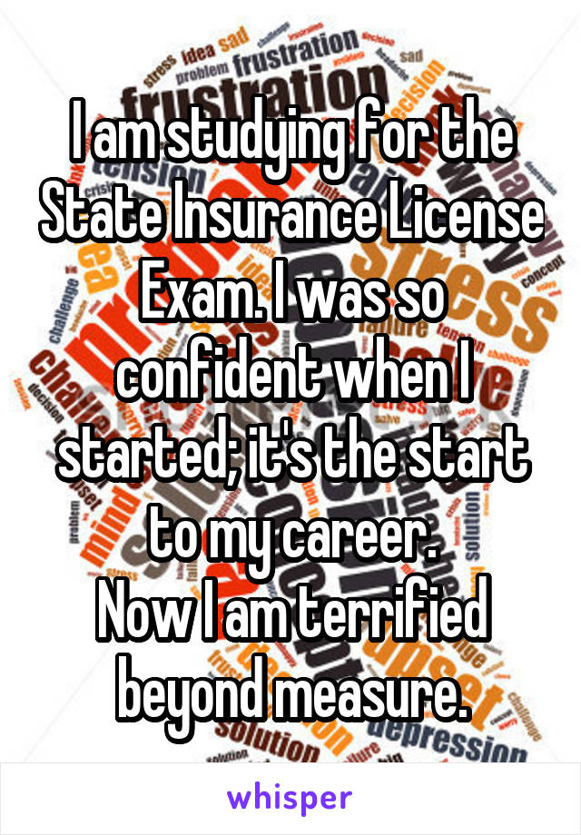 I am studying for the State Insurance License Exam. I was so confident when I started; it's the start to my career. Now I am terrified beyond measure.