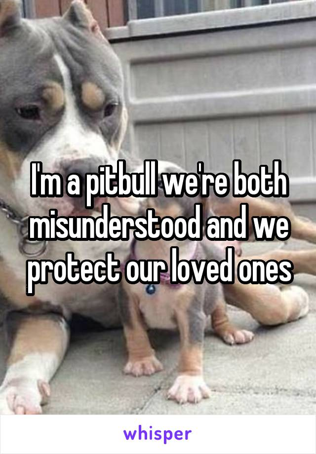 I'm a pitbull we're both misunderstood and we protect our loved ones