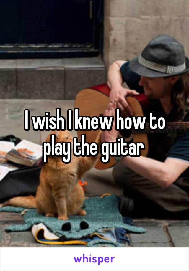 I wish I knew how to play the guitar