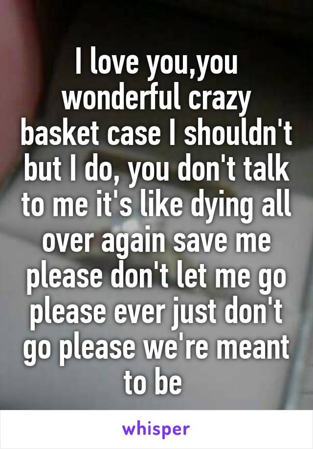 I love you,you wonderful crazy basket case I shouldn't but I do, you don't talk to me it's like dying all over again save me please don't let me go please ever just don't go please we're meant to be