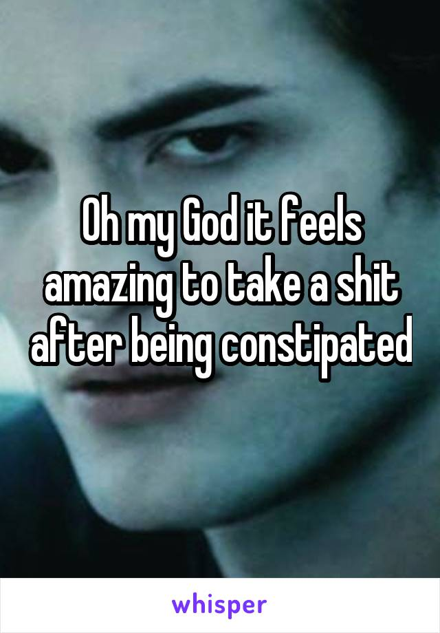 Oh my God it feels amazing to take a shit after being constipated
