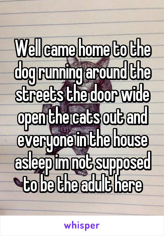 Well came home to the dog running around the streets the door wide open the cats out and everyone in the house asleep im not supposed to be the adult here