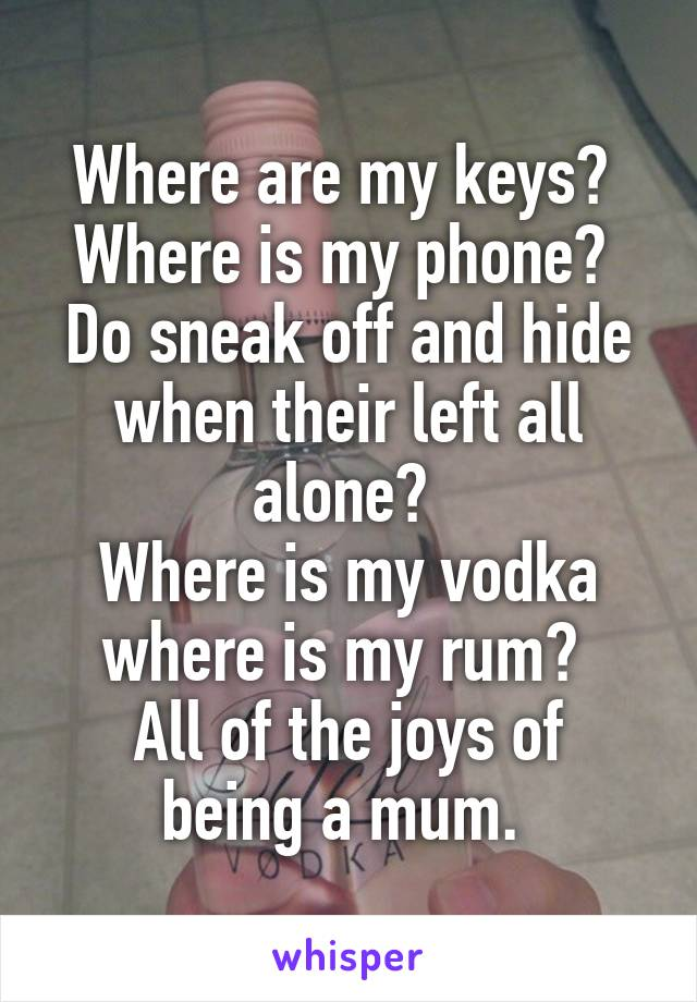 Where are my keys?  Where is my phone?  Do sneak off and hide when their left all alone?  Where is my vodka where is my rum?  All of the joys of being a mum.