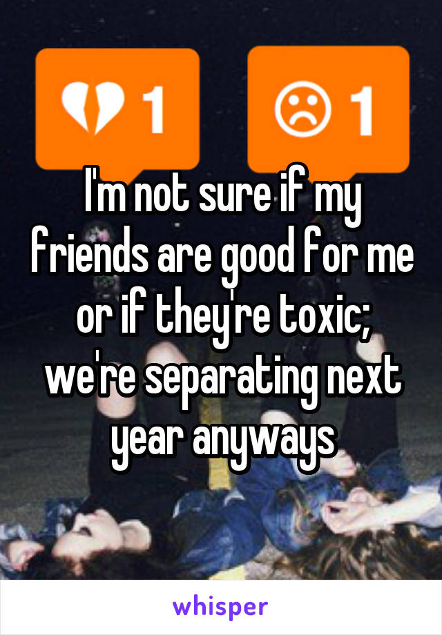 I'm not sure if my friends are good for me or if they're toxic; we're separating next year anyways