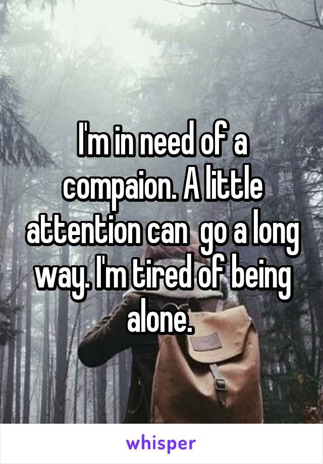 I'm in need of a compaion. A little attention can  go a long way. I'm tired of being alone.