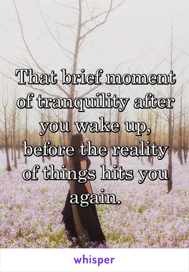 That brief moment of tranquility after you wake up, before the reality of things hits you again.