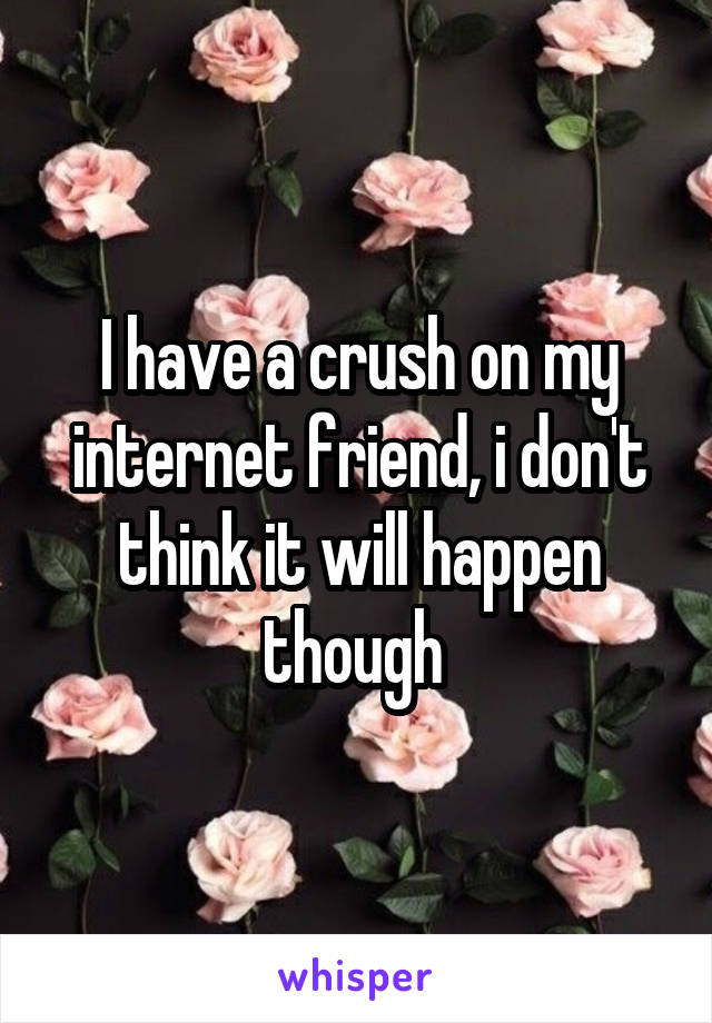 I have a crush on my internet friend, i don't think it will happen though