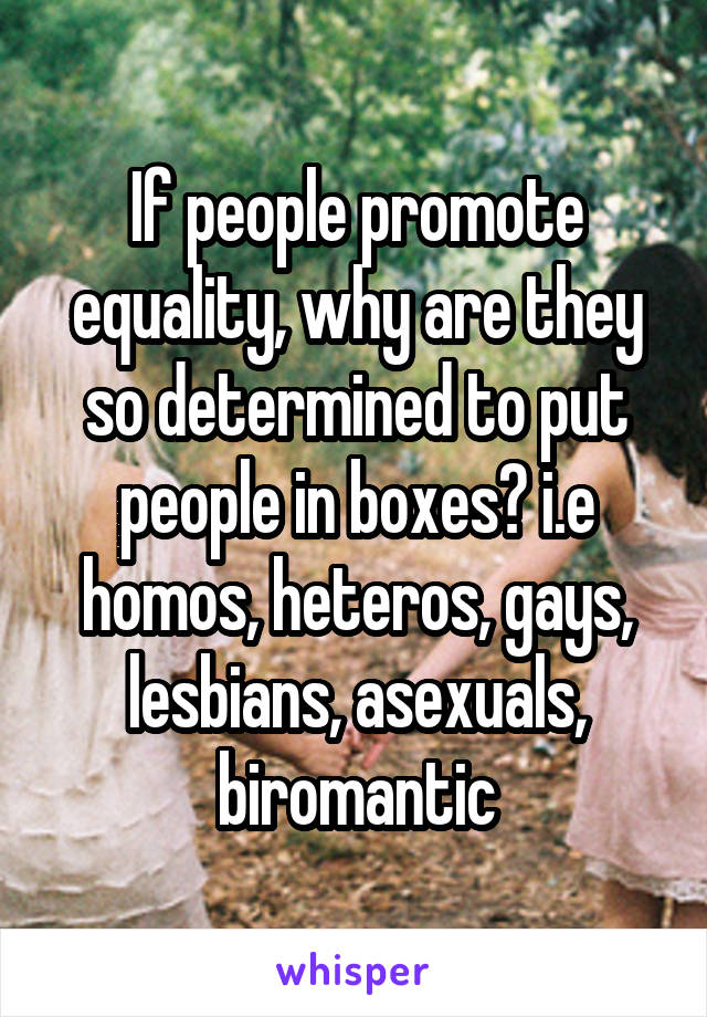 If people promote equality, why are they so determined to put people in boxes? i.e homos, heteros, gays, lesbians, asexuals, biromantic