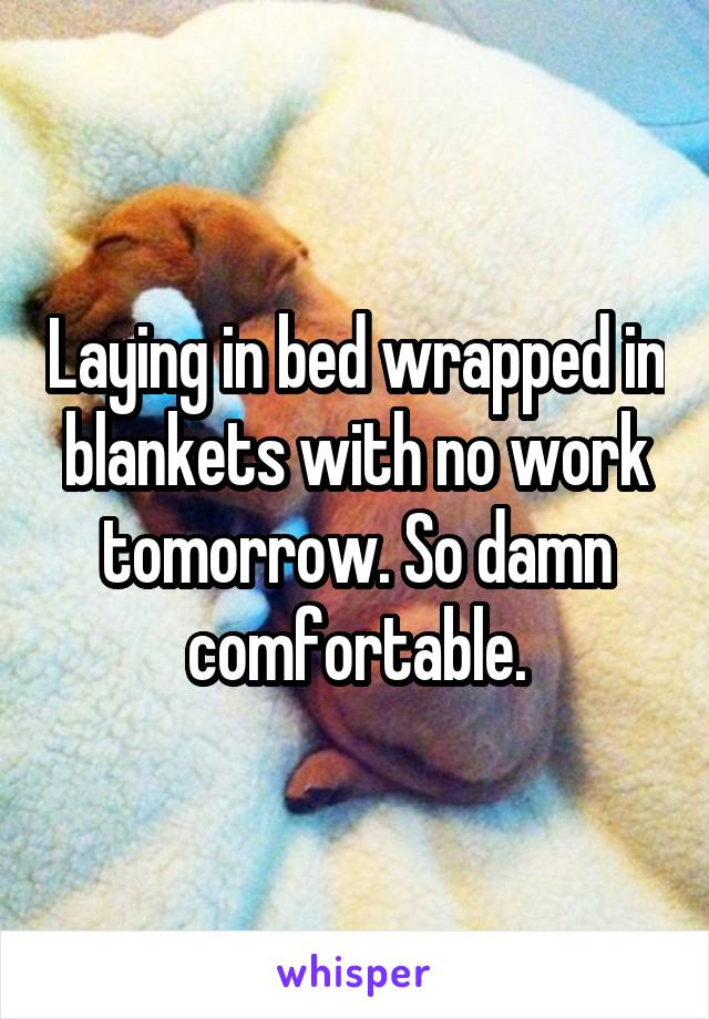Laying in bed wrapped in blankets with no work tomorrow. So damn comfortable.