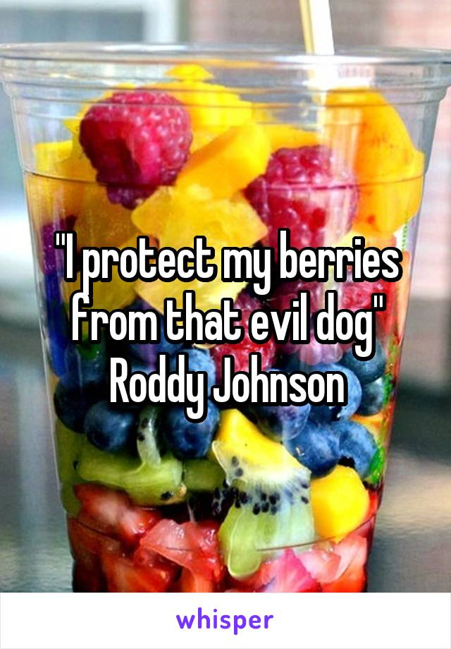 """""""I protect my berries from that evil dog"""" Roddy Johnson"""