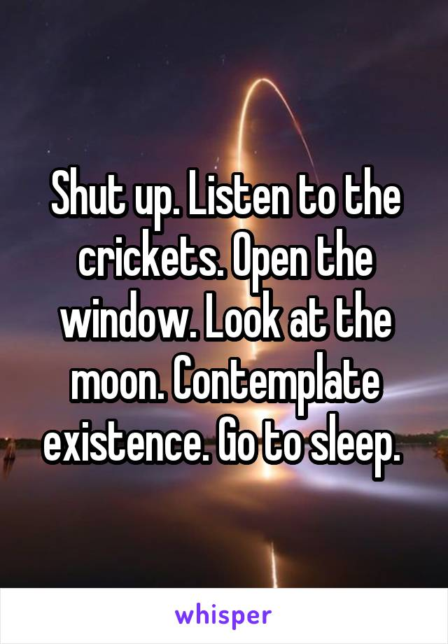 Shut up. Listen to the crickets. Open the window. Look at the moon. Contemplate existence. Go to sleep.