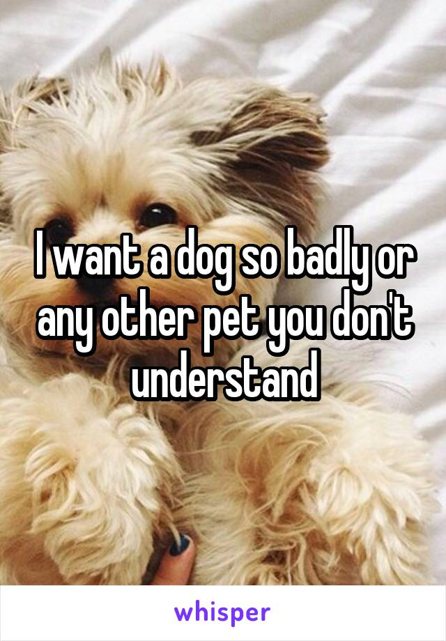 I want a dog so badly or any other pet you don't understand