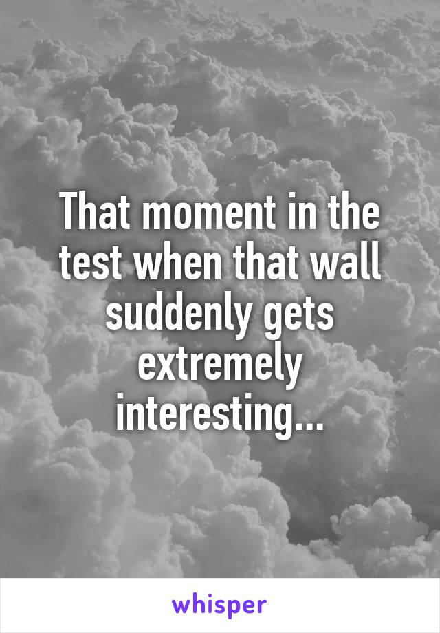 That moment in the test when that wall suddenly gets extremely interesting...