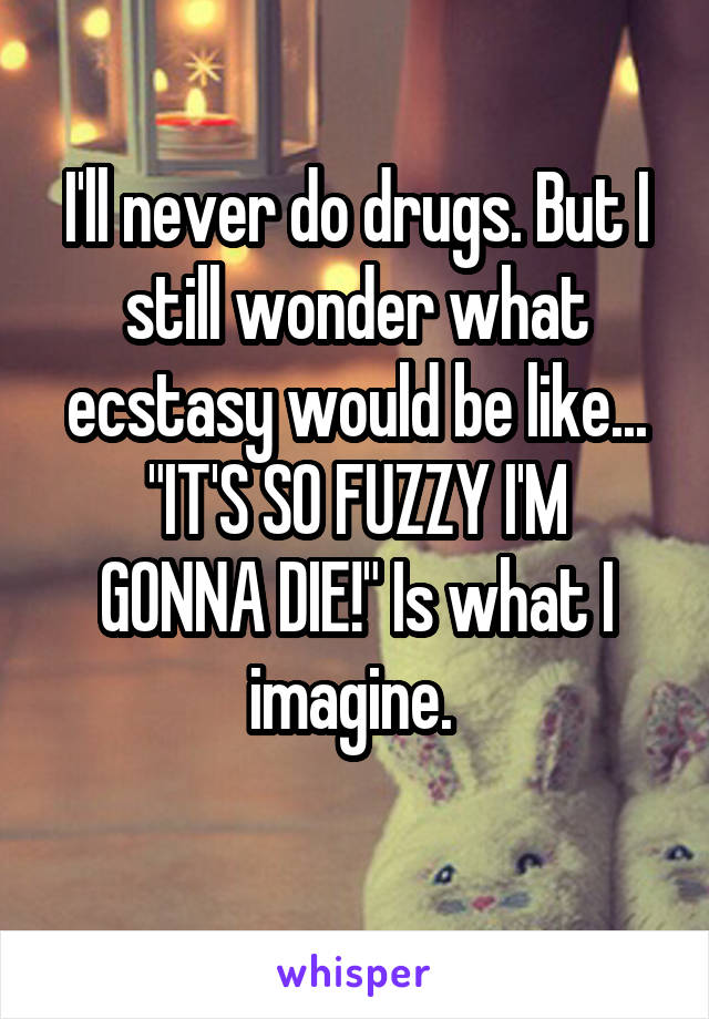 """I'll never do drugs. But I still wonder what ecstasy would be like... """"IT'S SO FUZZY I'M GONNA DIE!"""" Is what I imagine."""