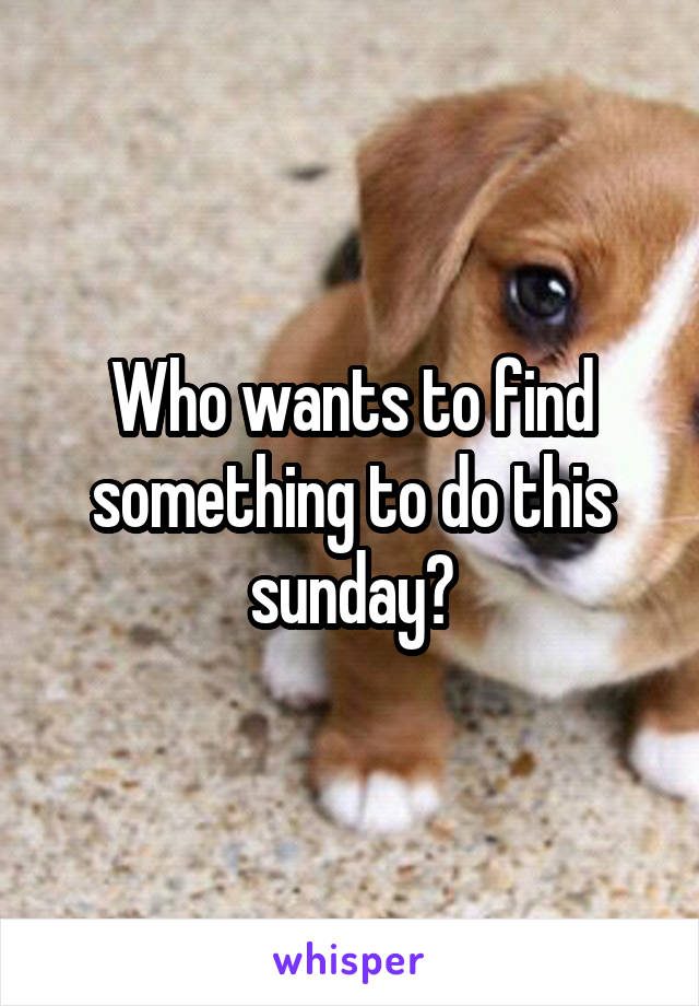 Who wants to find something to do this sunday?