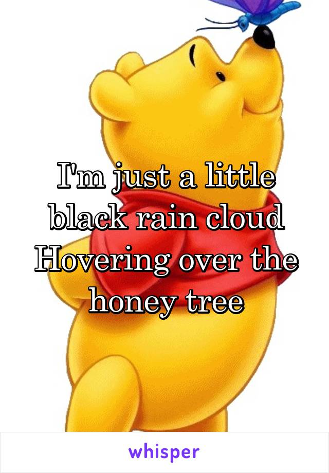 I'm just a little black rain cloud Hovering over the honey tree