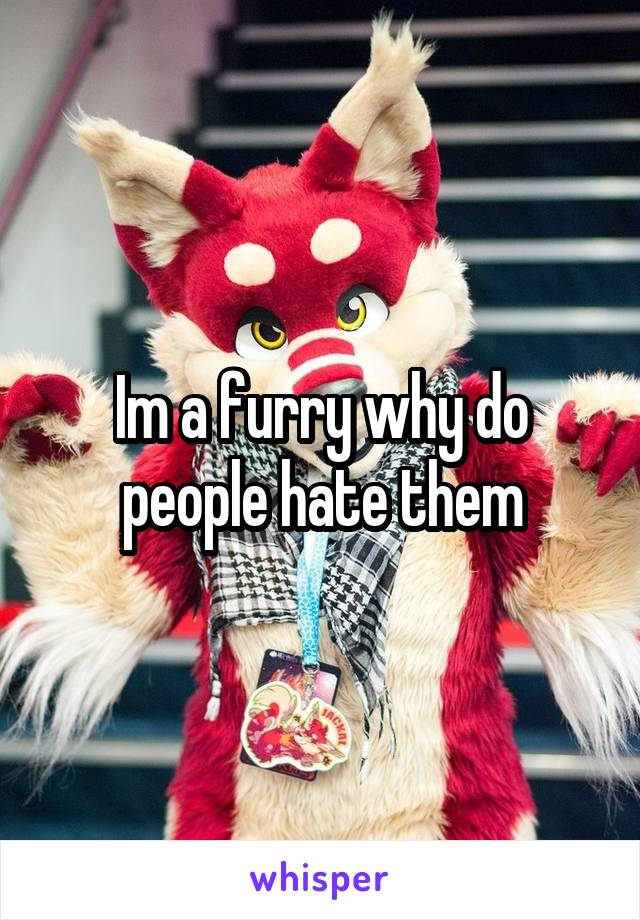Im a furry why do people hate them