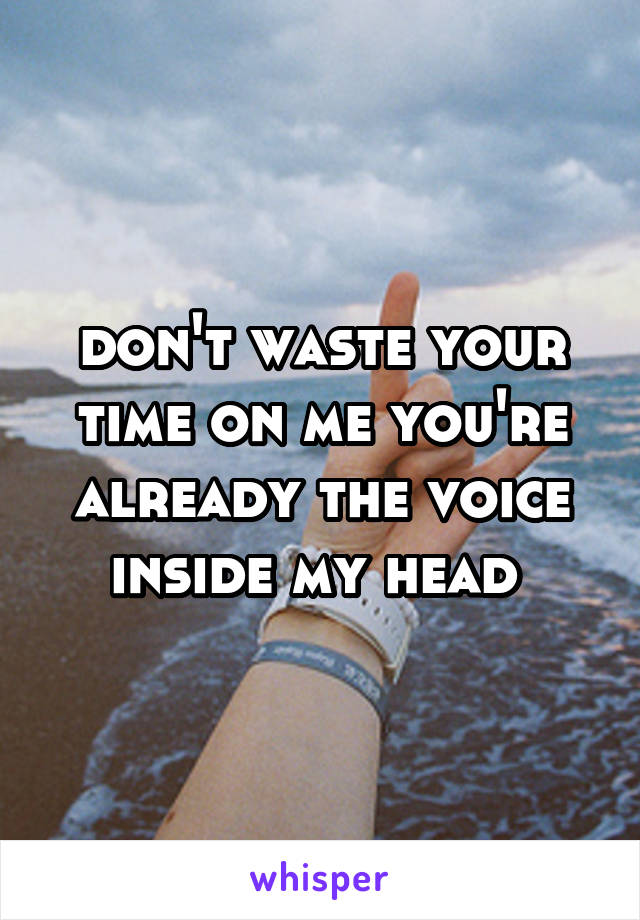 don't waste your time on me you're already the voice inside my head