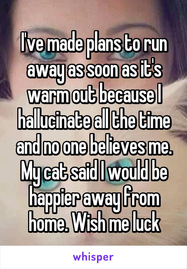 I've made plans to run away as soon as it's warm out because I hallucinate all the time and no one believes me. My cat said I would be happier away from home. Wish me luck