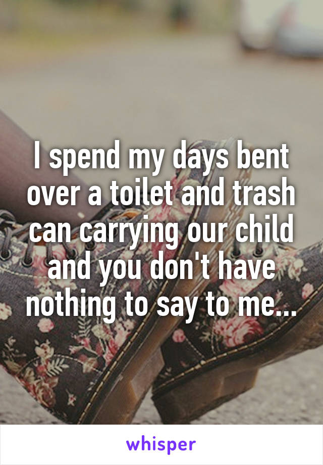 I spend my days bent over a toilet and trash can carrying our child and you don't have nothing to say to me...