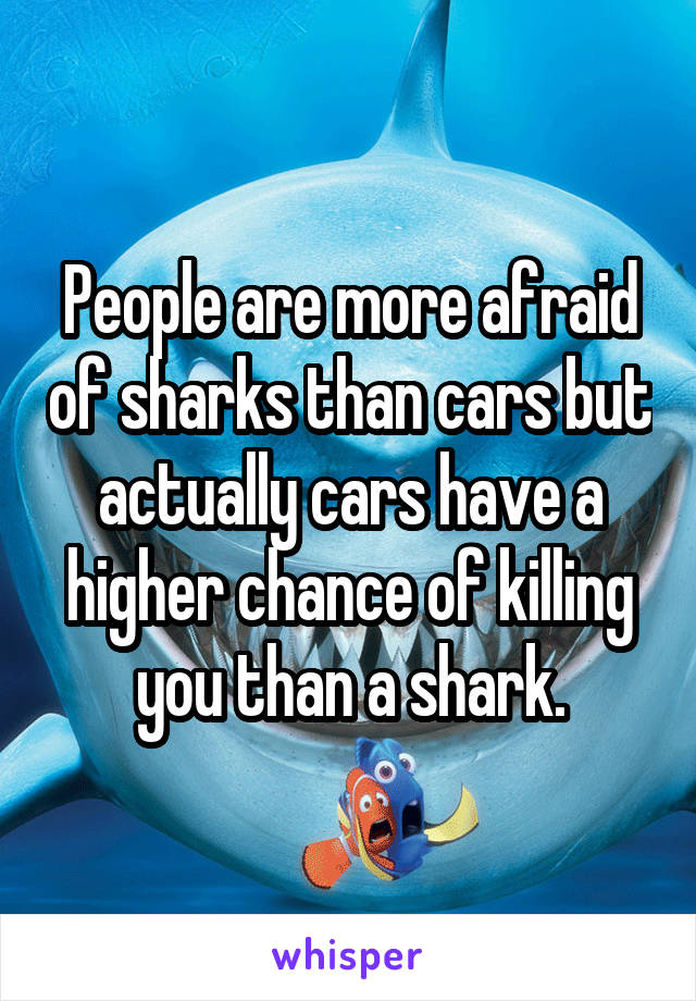 People are more afraid of sharks than cars but actually cars have a higher chance of killing you than a shark.