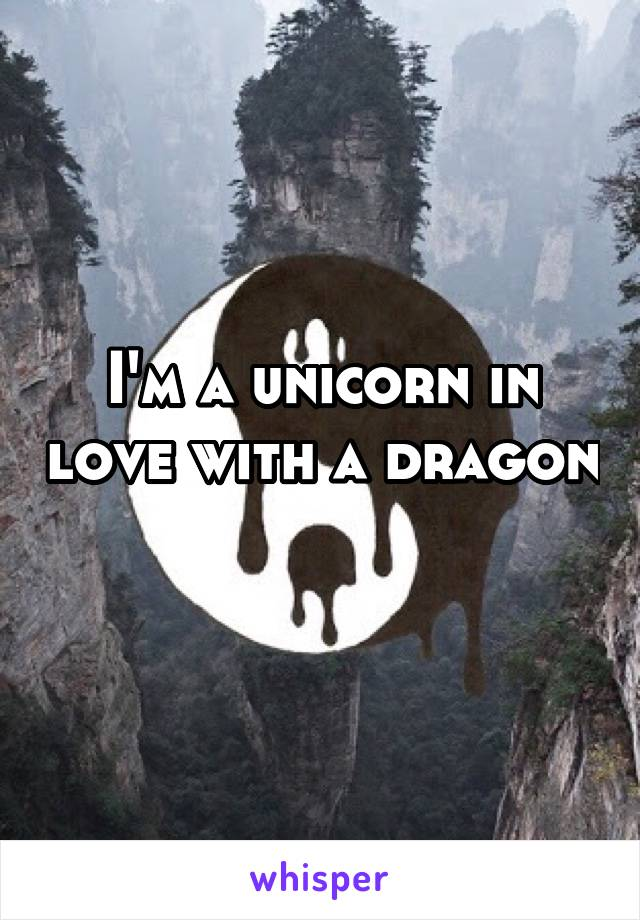 I'm a unicorn in love with a dragon
