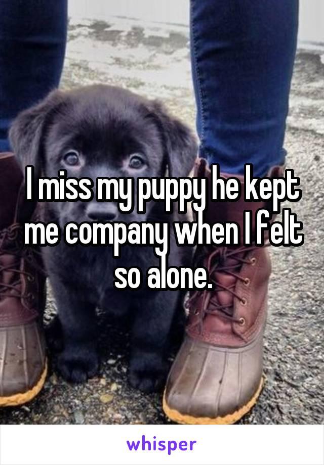 I miss my puppy he kept me company when I felt so alone.