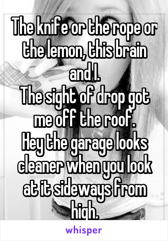 The knife or the rope or the lemon, this brain and I. The sight of drop got me off the roof. Hey the garage looks cleaner when you look at it sideways from high.