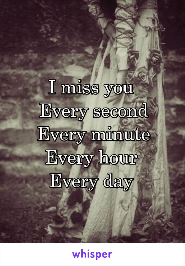 I miss you  Every second Every minute Every hour  Every day