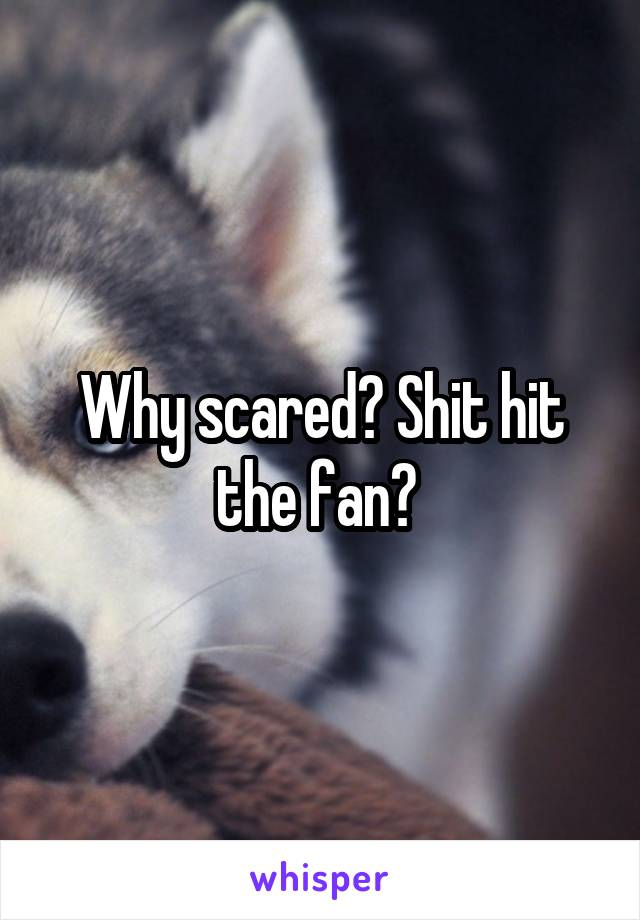 Why scared? Shit hit the fan?