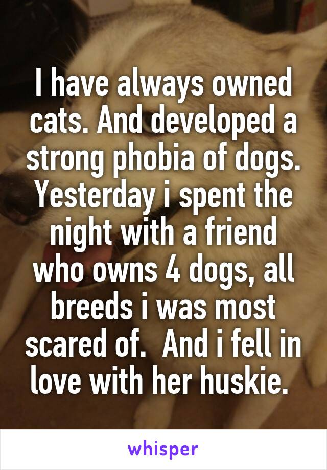 I have always owned cats. And developed a strong phobia of dogs. Yesterday i spent the night with a friend who owns 4 dogs, all breeds i was most scared of.  And i fell in love with her huskie.