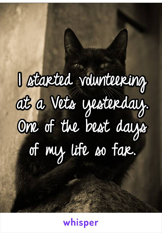 I started volunteering at a Vets yesterday. One of the best days of my life so far.