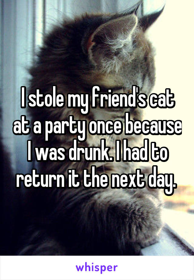 I stole my friend's cat at a party once because I was drunk. I had to return it the next day.