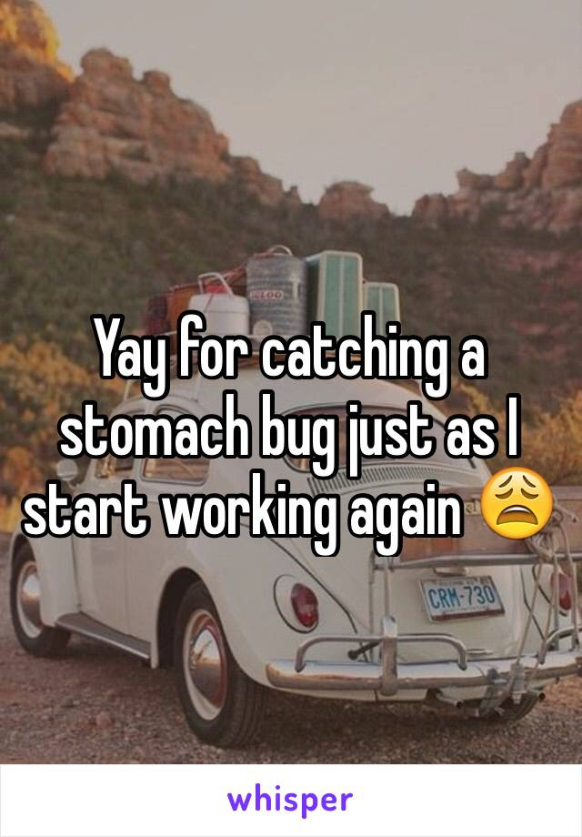 Yay for catching a stomach bug just as I start working again 😩