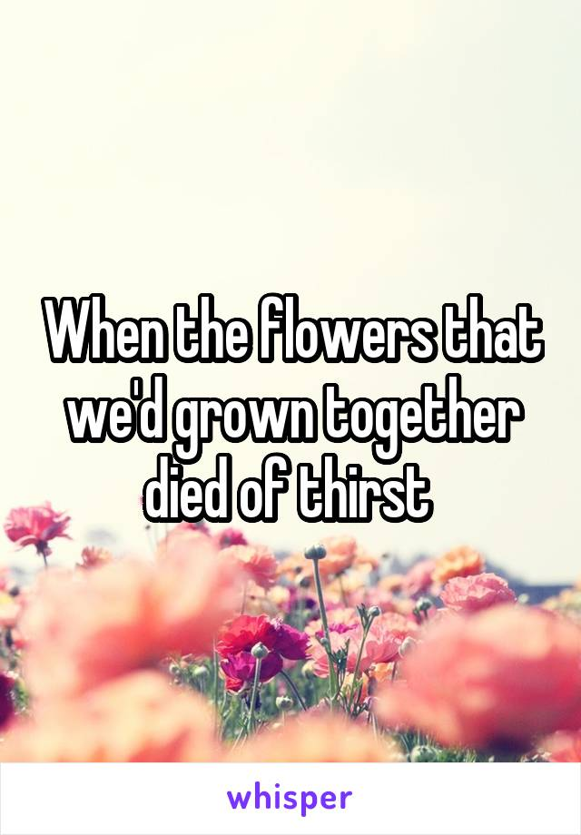 When the flowers that we'd grown together died of thirst
